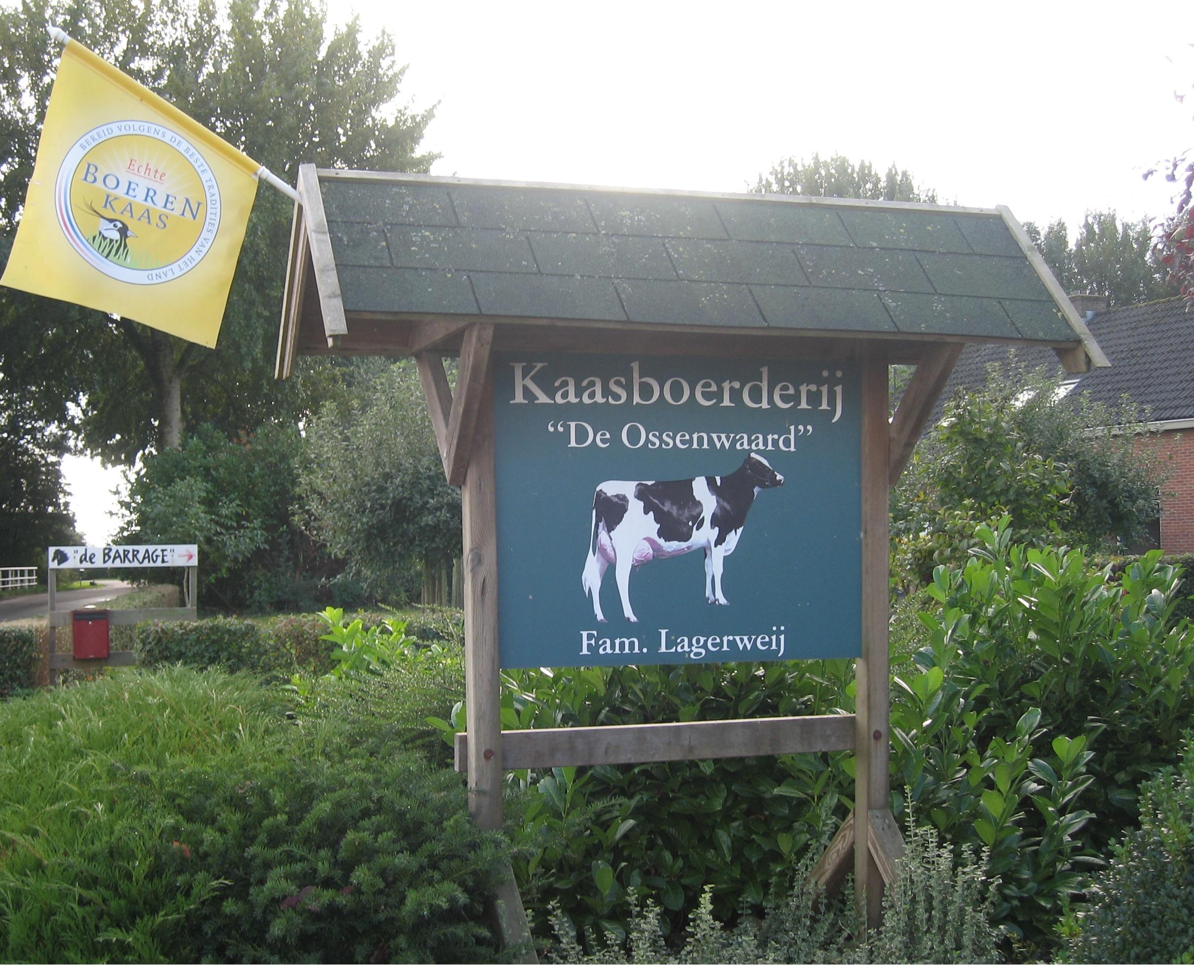 Kaasboerderij Ossenwaard